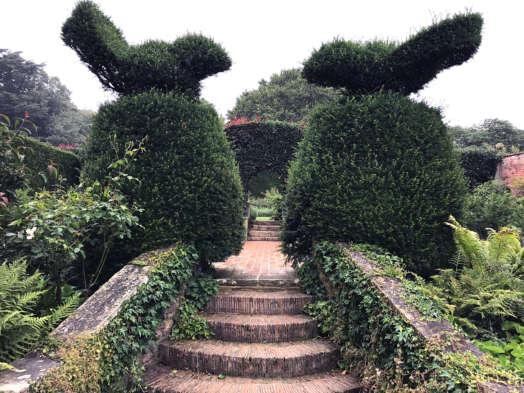 Topiary-birds