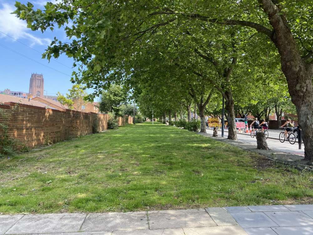 Park Lane Photo