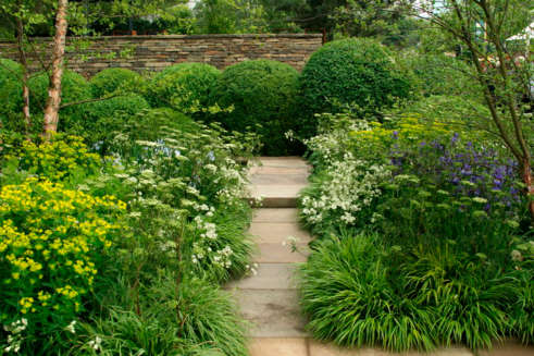 Woodland-understory-of-Tom-Stuart-Smiths-Chelsea-garden2